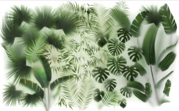 Фотообои Тропические листья за матовым стеклом